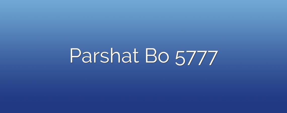 Parshat Bo 5777