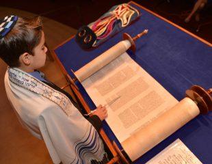 Benny reading Torah blue